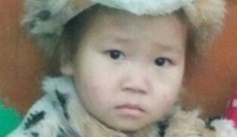 В Туве разыскивают пропавшую пятилетнюю девочку