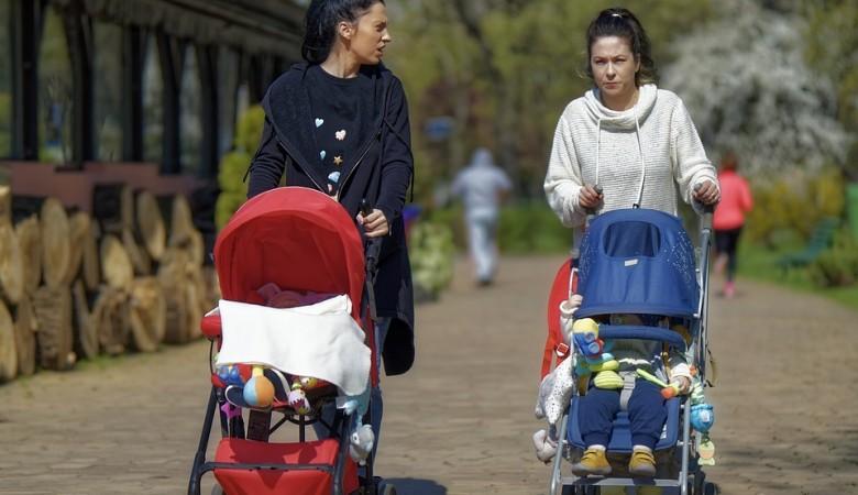 К начислению материнского капитала по-новому могут приступить уже весной