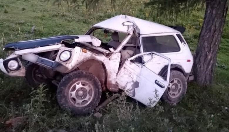 На Алтае пьяный водитель врезался в дерево на 1-м километре пути