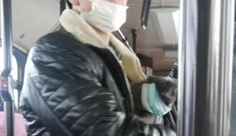 В Барнауле сфотографировали кота, соблюдающего масочный режим в автобусе
