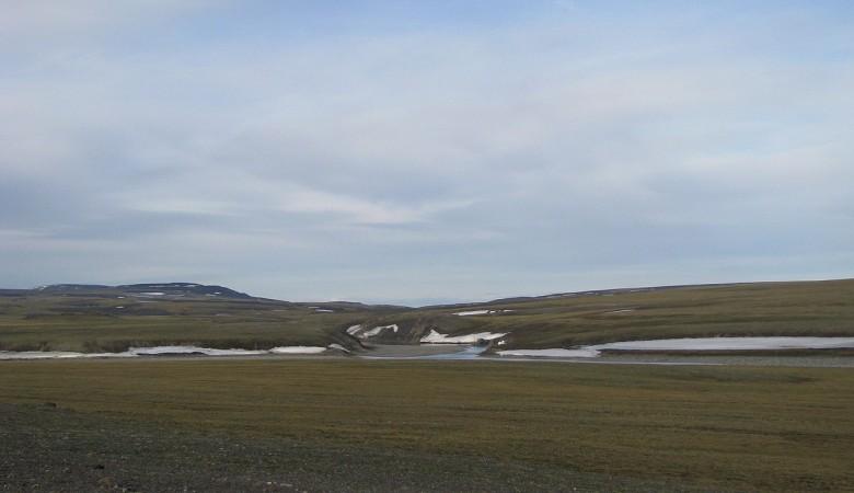 С «Росгеологии» требуют 94 млн руб. из-за просрочки работ на севере Красноярского  края