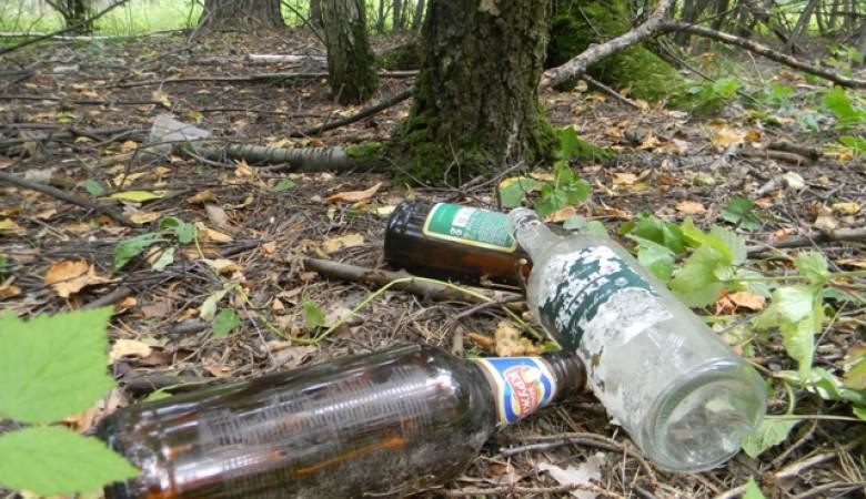 Алтайские депутаты внесли в Госдуму законопроект, стимулирующий потребление алкоголя в лесах