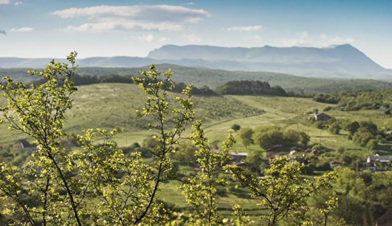 ВНовосибирской области будет создан Агроиндустриальный парк