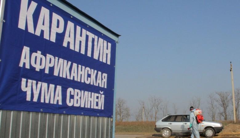 Карантин по африканской чуме свиней отменен в Иркутской области
