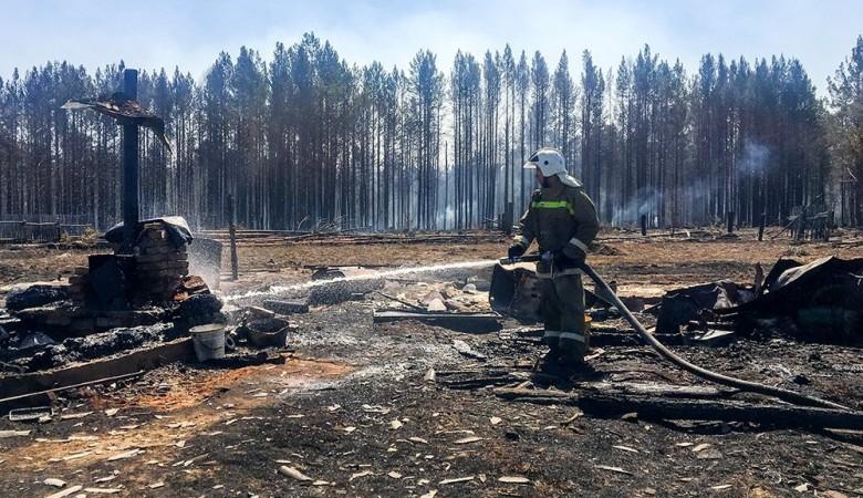 Жителя Забайкалья задержали за умышленный поджог леса