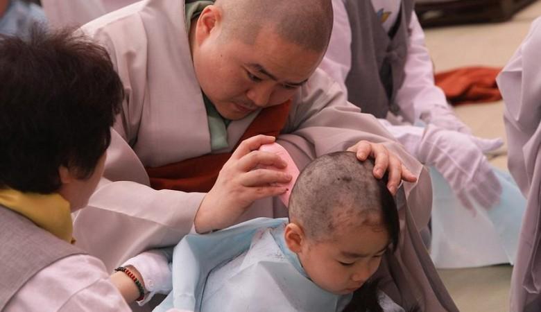Неменее 600 монахов-самозванцев разоблачили насвященной горе Утайшань в КНР
