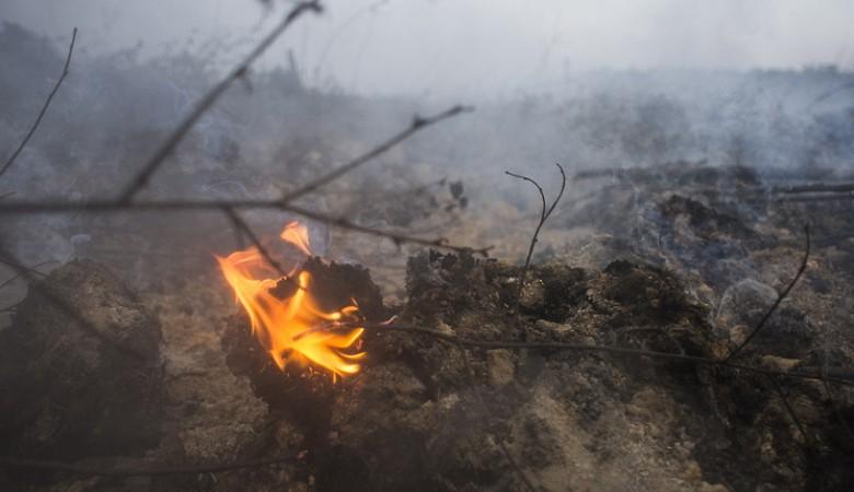 Локализован пожар на Харанорском угольном разрезе в Забайкалье