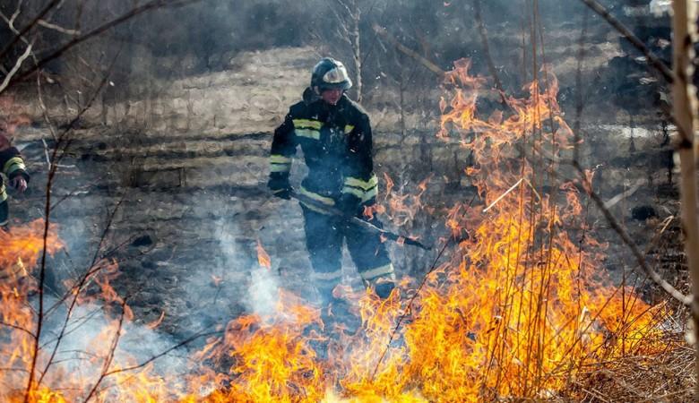 Два лесных пожара локализованы в Забайкалье на площади в 320 гектаров