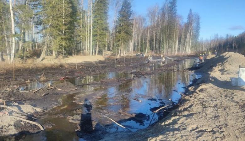 Проверка установила многократное превышение данных «Томскнефти» о разливе нефти