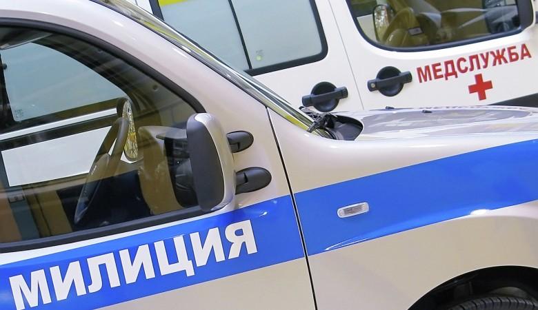 Председатель избиркома в Норильске спасла мужчину, сделав ему искусственное дыхание