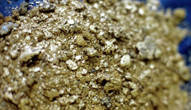 Производство золота на Тарданском месторождении в Туве за год выросло почти на треть