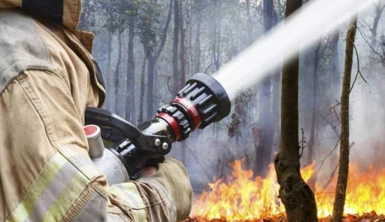 Особый противопожарный режим введен в Хакасии