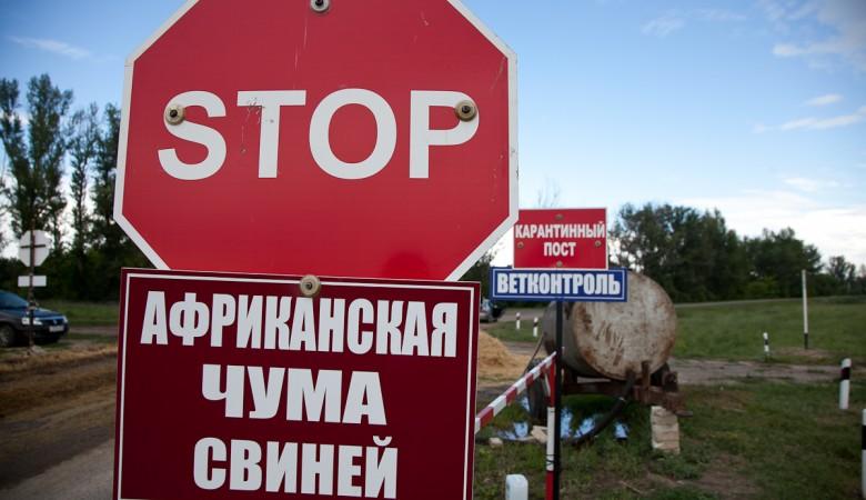 В Омской области объявлен карантин из-за АЧС