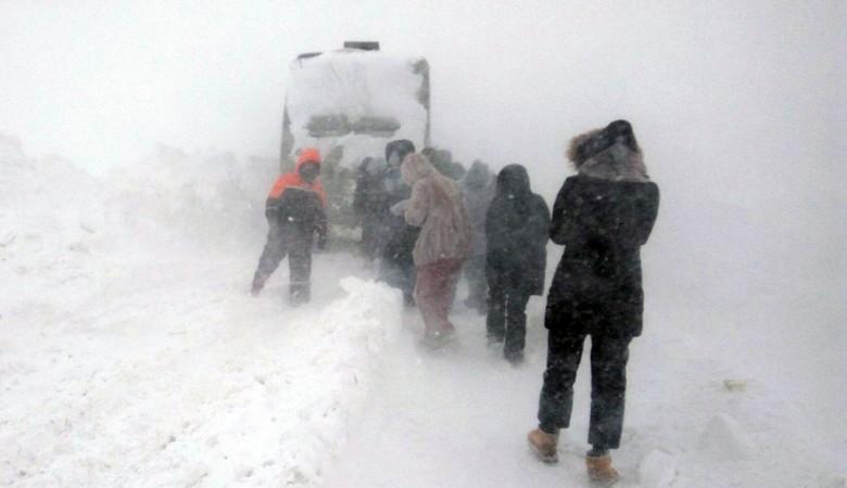 Алтайские перевозчики, чьи автобусы застряли во время метели, лишились лицензий