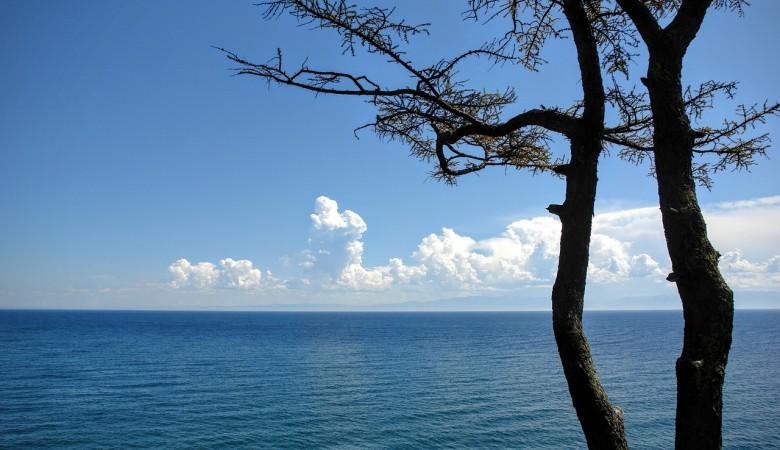Киприот получил контроль над компанией-экспортером воды, добываемой на озере Байкал