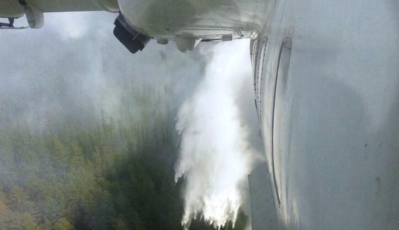 Более 29 тыс. га леса горит в Забайкалье