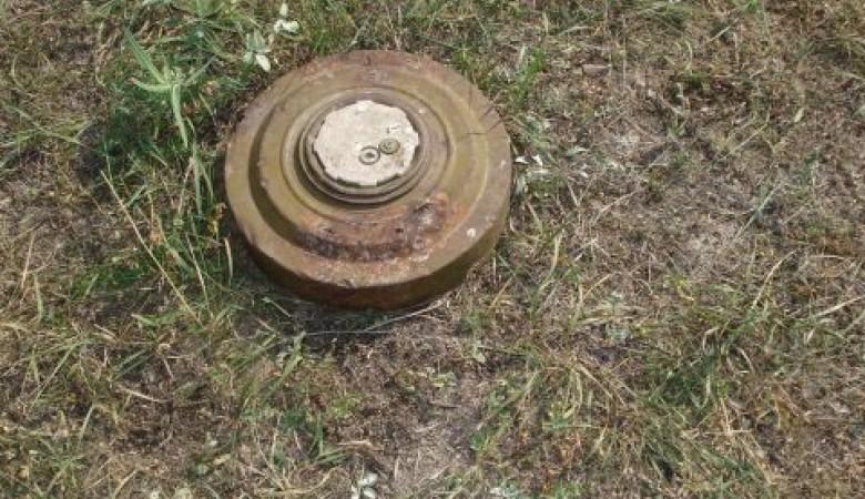 Житель Республики Алтай нашел учебную мину в селе