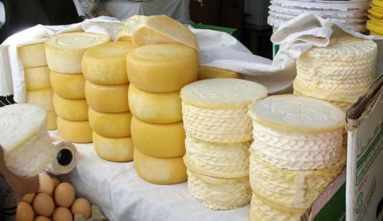 Сибирские ученые спроектировали импортозамещающий фермент для новых сортов сыра