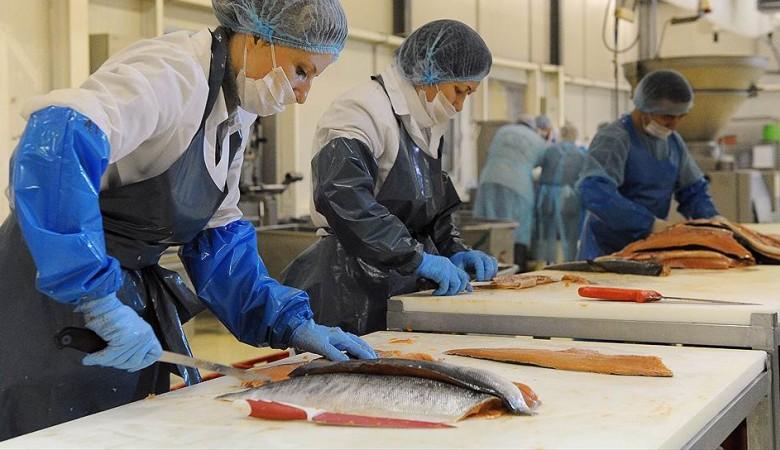 Производителя рыбы «Делси» признали банкротом