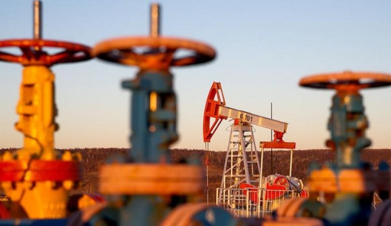 Томская область будет просить налоговые преференции для разработки углеводородов доюрского периода