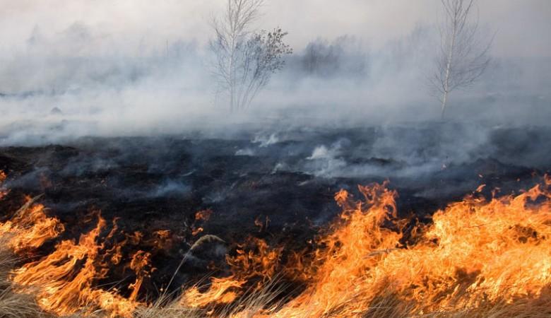 Почти 400 человек тушили 10-километровый степной пожар рядом с селом в Хакасии