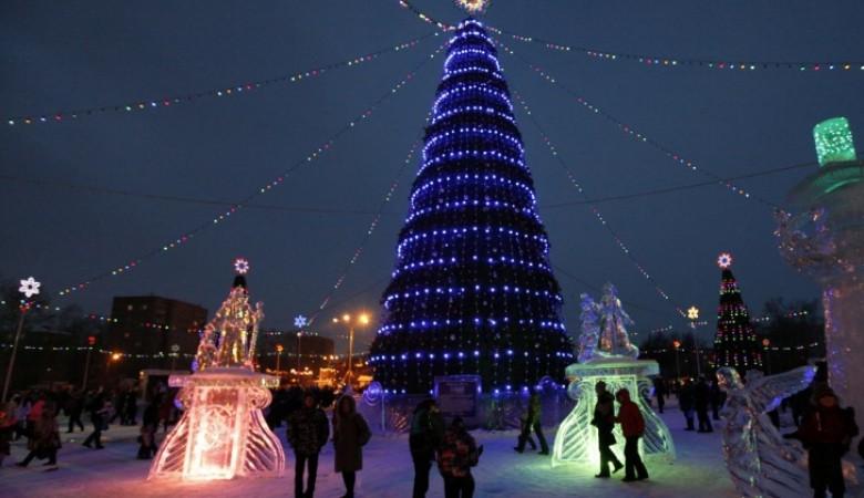 Красноярская елка «подешевела» на 6 млн рублей после угрозы обращения в Счетную палату