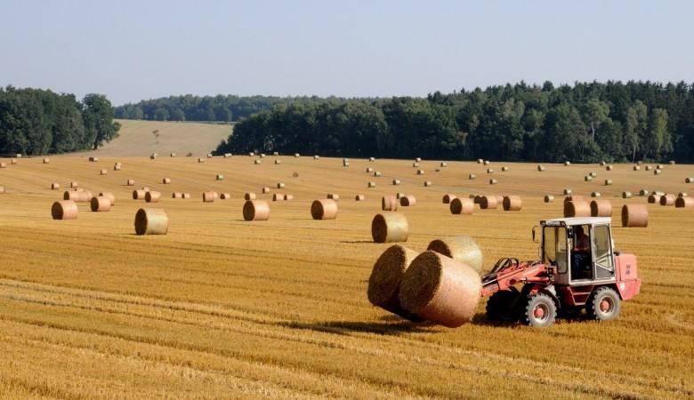 Мошенники из Алтайского края продали несуществующий трактор за 960 тыс руб