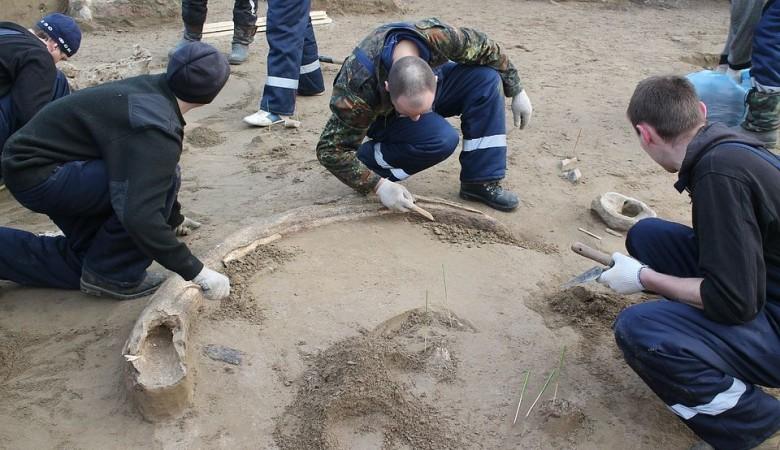 Стоянку охотников на оленей и бизонов каменного века обнаружили в Красноярске