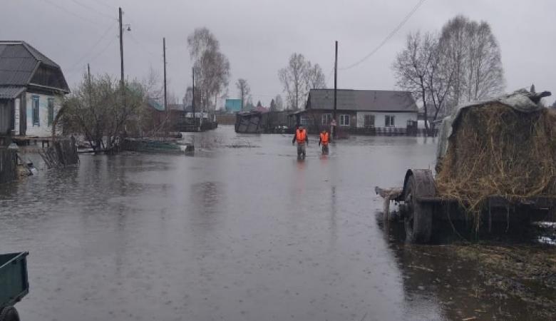 В Алтайском крае паводком подтоплено 15 жилых домов и более 170 дачных участков