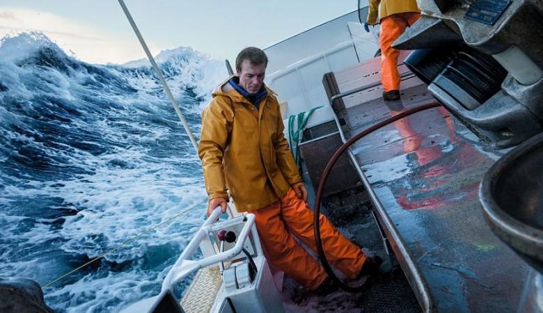 Японские китобои: 333 убитых кита за4 месяца
