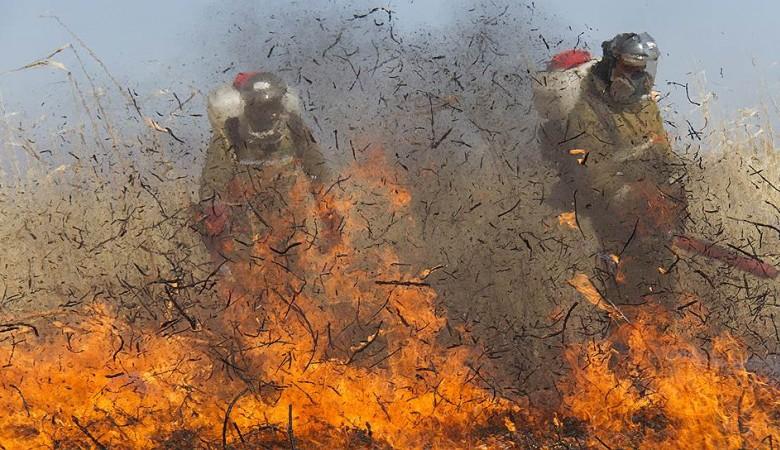 Около 3,8 тыс. га леса охвачено огнем в Забайкалье