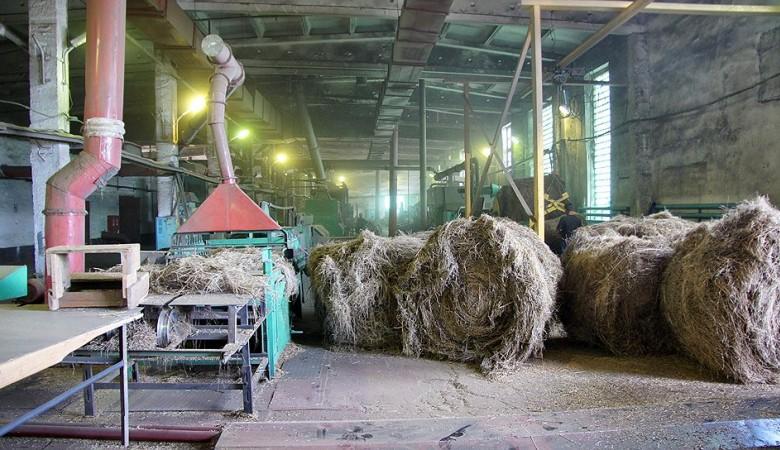 Алтайские аграрии впервые приобрели российское оборудование для производства льна