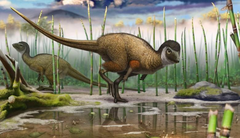 Первый в мире травоядный пернатый динозавр найден в Забайкалье