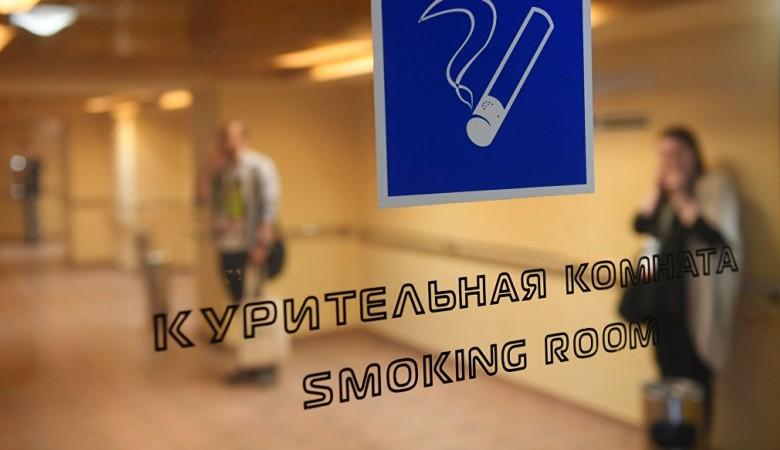 Госдума в весенней сессии примет законы о защите Рунета и возвращении курилок в аэропортах