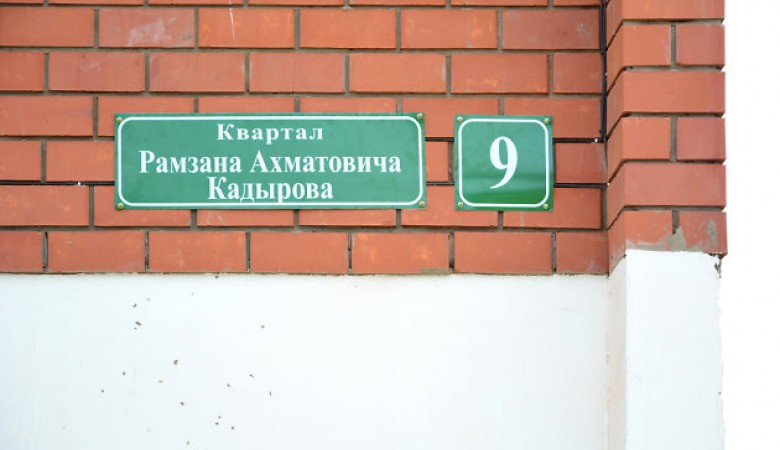 Застройщица квартала Кадырова под Иркутском пробовала задавить пристава трактором