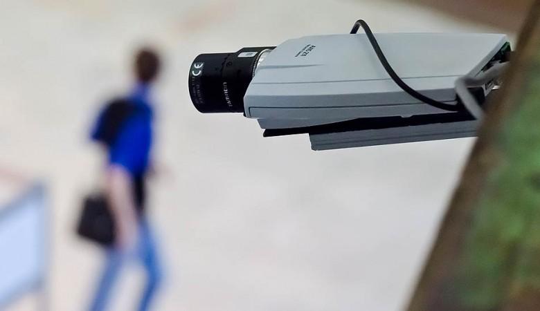Видеокамеры планируют установить в Красноярском крае для борьбы с лесными пожарами