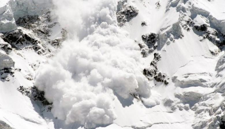 Почти 500 голов скота попали под лавину в горах Тувы