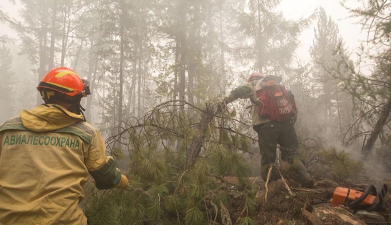 Самолет, вызывающий осадки, задействован для тушения лесных пожаров в Иркутской области