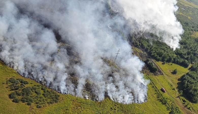 Площадь природных пожаров в Иркутской области за сутки выросла на 21%