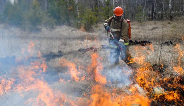 Лесной пожар остановлен вблизи детского лагеря и дома престарелых в Иркутской области