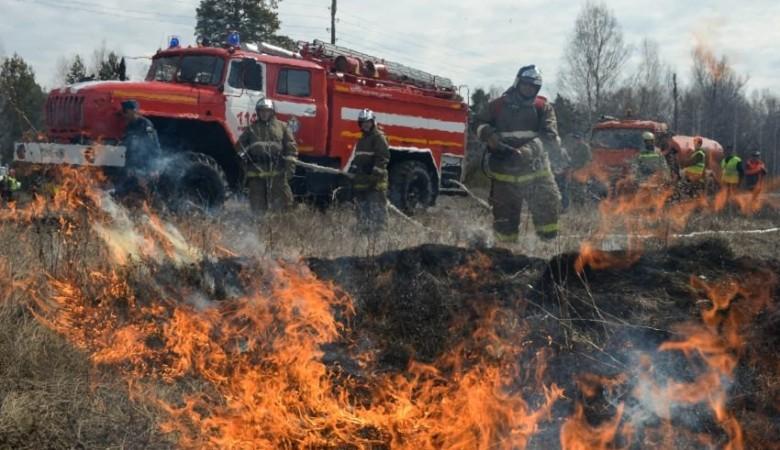 Природный пожар перекинулся на заповедник