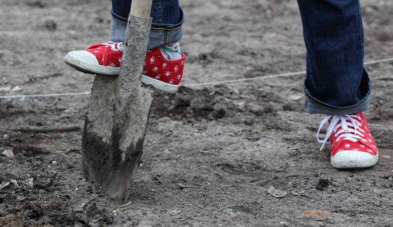 В Омске учетчик кладбища незаконно похоронил 86 человек