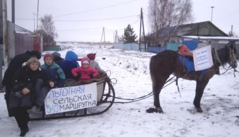 Лошадиная повозка заменит 5 автобусных рейсов между Омском и пригородным селом