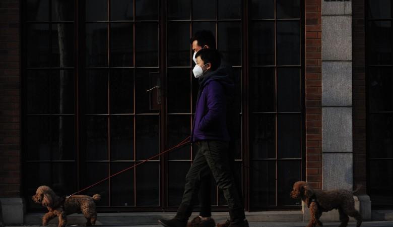 Ещё один случай бубонной чумы выявлен на западе Монголии
