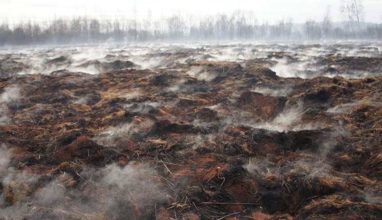 Травяные пожары охватили площадь в 6 тыс. га в Забайкалье