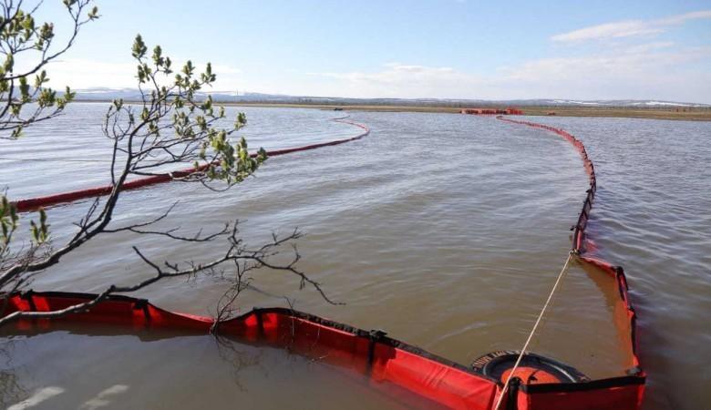 Росрыболовство заявило, что восстановление рыбных запасов на Таймыре займет 18 лет