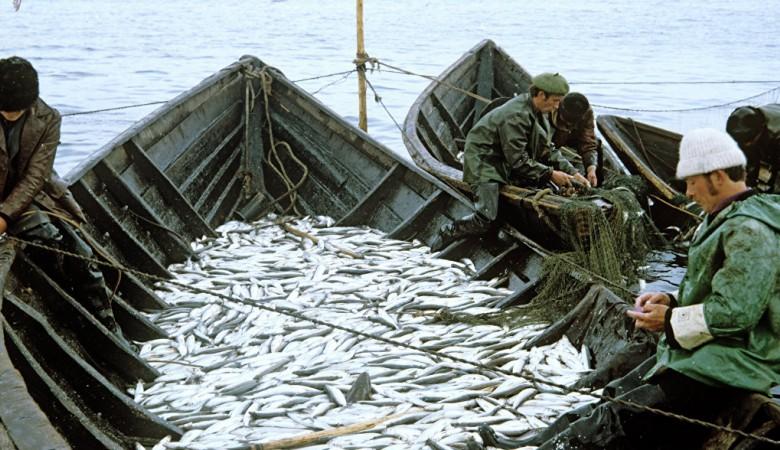 Два корабля задержаны на Байкале за незаконную добычу омуля