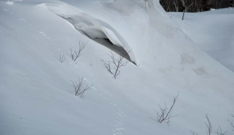 ВТомске мужчина умер под обрушившимся снегом, проводится проверка