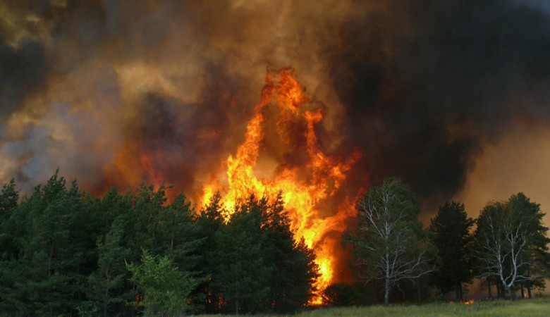В Бурятии из-за лесных пожаров вновь введен режим ЧС