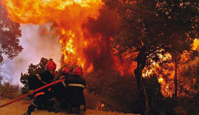 Площадь лесных пожаров в Иркутской области превысила 97 тыс. га